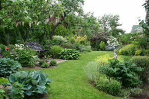 планировка смешанного сада