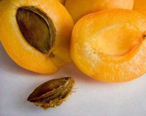плоды сорта Шалах